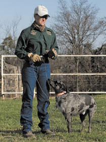 Tammy and one of her cowdogs